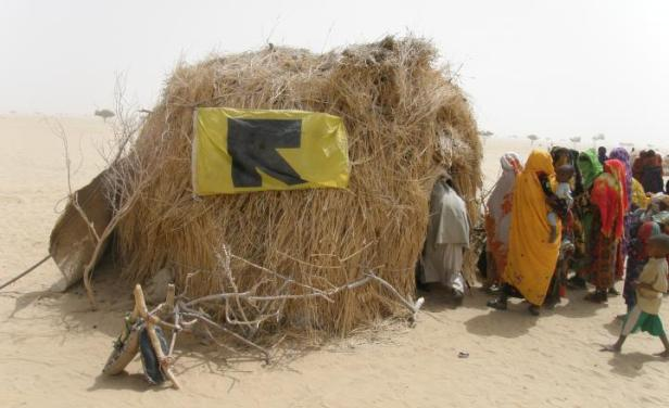 Drought relief from the IRC in Chad