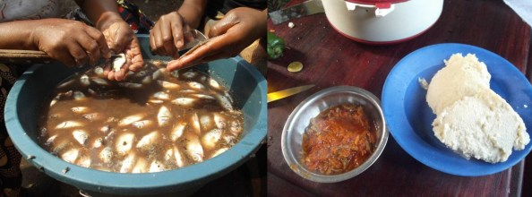 Left: food preparation, Right: dinner time!
